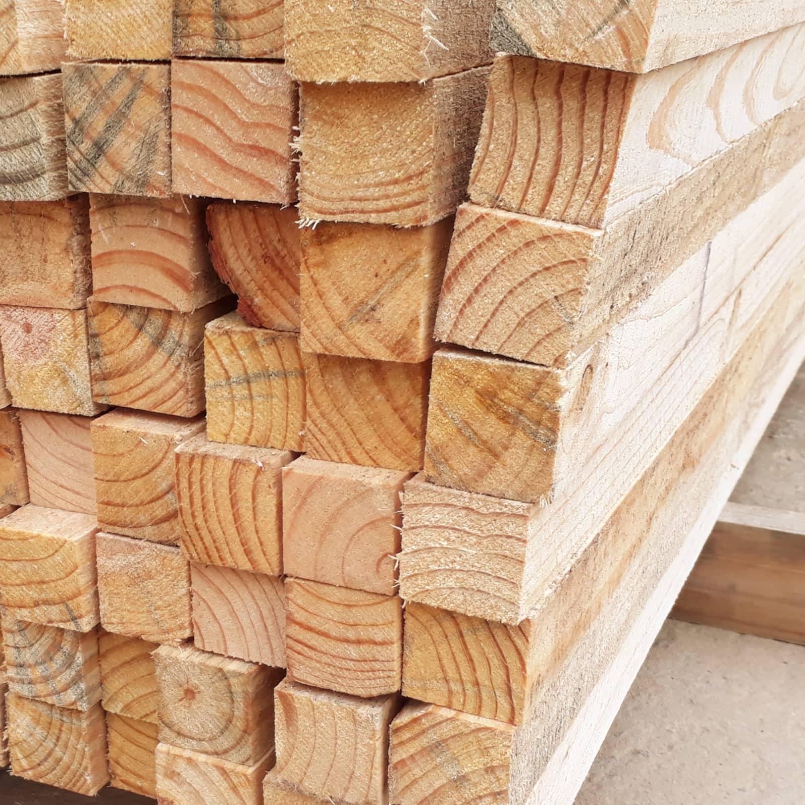 Pinus Natural 5x5x3mts
